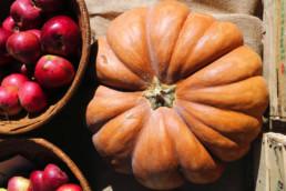 mercatini del contadino - cucina italiana - italian food - made in italy - maria laura berlinguer stile italiano - ricette - consigli - italian style - fatto in italia - blog