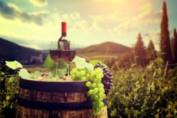 Vivere in Toscana - Case Italiane - Italian Houses - Maria Laura Berlinguer - Stile Italiano - Italian Life - Consigli e Suggerimenti - Wine