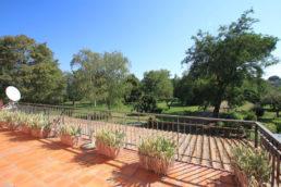 casa in vendita nella campagna romana - maria laura berlinguer - stile italiano - case italiane - home - house - living - immobiliare - lazio