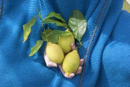 Lanificio Leo - il tessile made in italy - maria laura berlinguer stile italiano - fatto in italia - qualità artigianale - calabria - italia - moda donna - fashion - moda uomo
